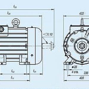 Электродвигатель MTF 411-6 — (F) 22 кВт